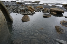 Ripples and rocks